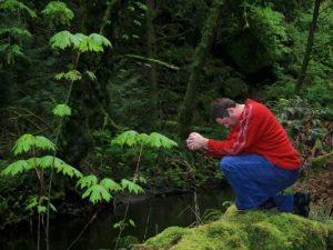 prayer in forest